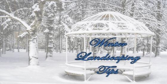 WinterLandscapingTips