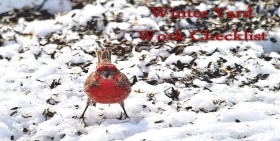 winteryardworkchecklist