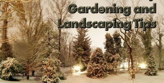 feb gardening landscaping tips